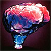 lamps/brain-electra-lamp.jpg